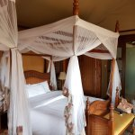 Photo of Kilima Safari Camp