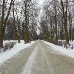 Photo of Lazienki - Royal Residence Park