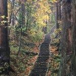 autumn walk up