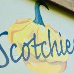 Foto di Scotchies