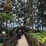 Foto van Dusun Bambu