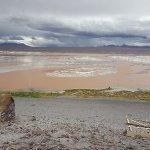 Laguna Colorada照片