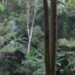 Photo of Khun Korn Waterfall