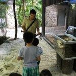 Photo of Croco Cun Zoo