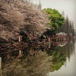 Photo of Changsha Nanjiao Park