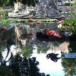 Foto de Grand Palladium Kantenah Resort & Spa