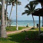 bungalow à quelques mètres de la plage