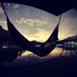 estrells en la noche /stars in the night