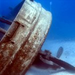 Foto de Living The Dream Divers