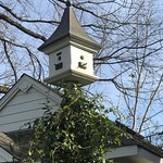 Fun collection of bird houses and bird baths here