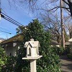 Cottage Grove Inn Foto