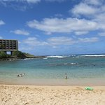 Kulima Cove, at the Turtle Bay Resort. Sheltered coral reefs.