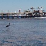 Photo of Tamra Beach