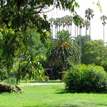 Photo of Jardin Botanico