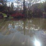 Foto de Jardin Japonais