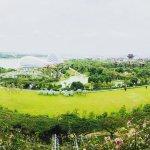 Photo de Gardens by the Bay