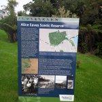 Alice Eaves Scenic Reserve Foto