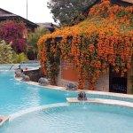 Фотография Temple Tree Resort & Spa