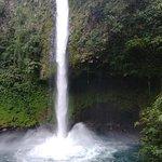 Beautiful waterfall in the rainforest!