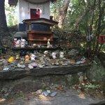 Zdjęcie Cat Shrine
