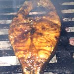 Blackened or grilled Marlin. Meals comes with 2 side orders, 2 rum punch and free dessert. We sp
