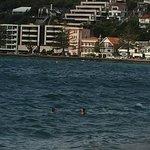 Oriental Bay Foto