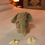 Photo of Kithala Resort