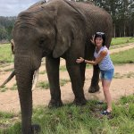 Photo de Knysna Elephant Park