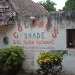 Photo of Colobus Shade