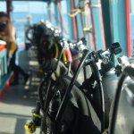 Photo de Ocean Sound Dive & Yoga