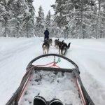 Kakslauttanen Arctic Resort Foto