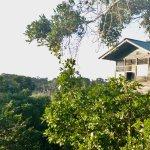 Treehouse Camp das solltet ihr euch nicht entgehen lassen