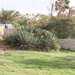 Photo of Royal Horizon Boa Vista