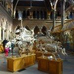 Pitt Rivers Museum Foto
