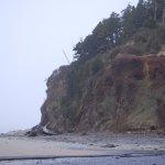 Coastline from the beach.