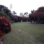 Photo of Museo Larco