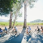 Guided bike tours led at a casual pace