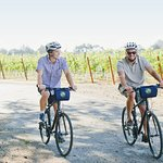 Bike Sonoma's quiet country roads and visit local wineries