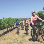 Ride off-road through the vineyards: Cycling IN the Vineyards Tour