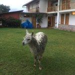 Gocta Andes Lodge Foto