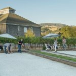 Bocce courts and picnic tables among the vines
