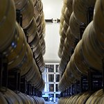 Sign up for one of our experiences and take a tour of our barrel room.