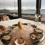 Half dozen kumamoto oysters, harbor table view