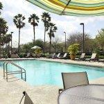 Foto de Embassy Suites by Hilton Orlando Airport