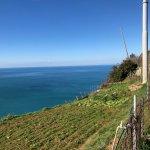 Cinque Terre Trails Foto