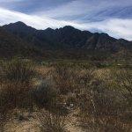 Foto de Madera Canyon