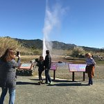 Old Faithful Geyser Calistoga