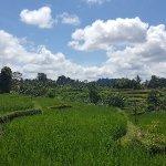 Photo de Bali Bike Baik Cycling Tours