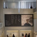 Photo of Hiroshima Peace Memorial Museum