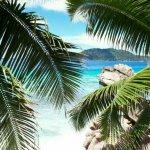 Foto de Le Domaine de L'Orangeraie Resort and Spa